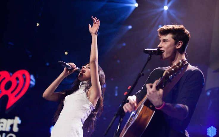 Camila Cabello, Shawn Mendes Reunite in Selfie Amid Dating Rumors