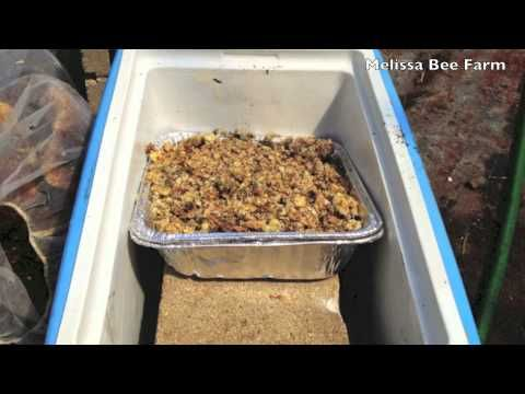Here's a Beekeeping video Rick made about how to make a DIY solar honeybee wax melter out of stuff you have in  your garage    More beekeeping : http://www.gardenfork.tv/category/gf-tv/beekeeping-episodes Our beekeeping 101 videos document our experiences keeping honeybees. We are not experts, but learn as we go.
