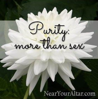 Why Should You Choose Sexual Purity? | Student Devos ...