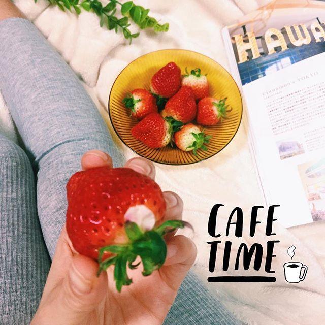 【ri4ri4】さんのInstagramをピンしています。 《☕️💭 ≫ ≫ 母が買ってくれたイチゴの葉っぱに桜の花びらが挟まっていたっ🌸 まだ咲いてないこの時期に不思議♡ ・ イチゴが冷蔵庫にいっぱい幸せ😍 ・ お祝いもみんなに頂いて感謝感謝😭✨ 内祝い何がいいかなぁ🤔💭 ▽ ▽ ▽ #instagood #strawberry #genic_mag #genic_hawaii #vscomania #mamalife #苺 #イチゴ #桜 #足元倶楽部 #リブレギンス #カメラ女子 #赤ちゃんのいる生活 #ママリ #ママライフ》