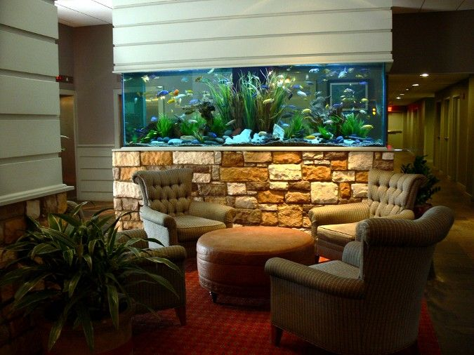30 Best Ideas About Home Aquarium Design On Pinterest