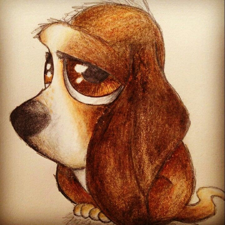 Basset dog. Crayons and pencil. A4 size.