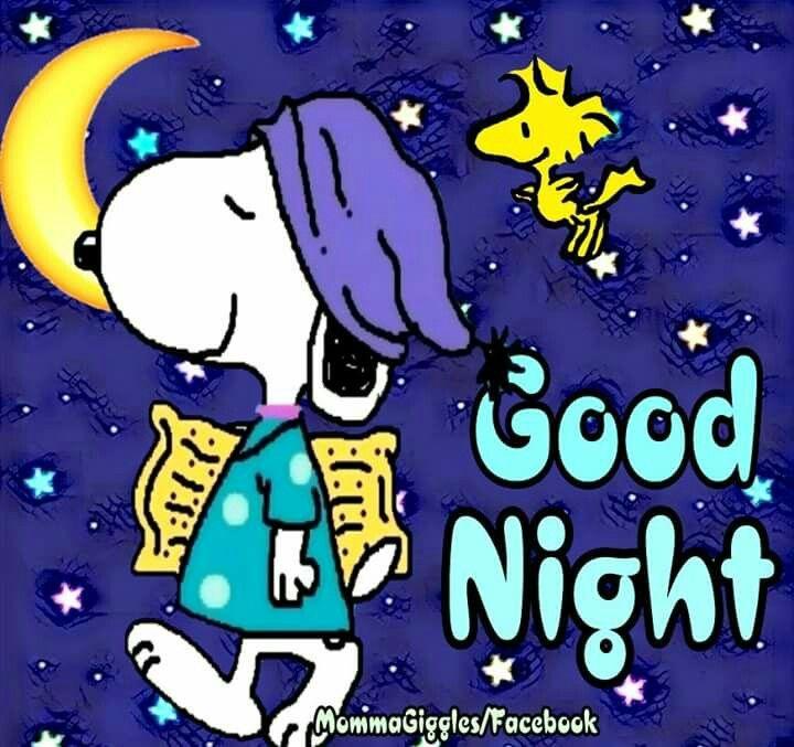 Jó éjt, Éjszaka, Barátság