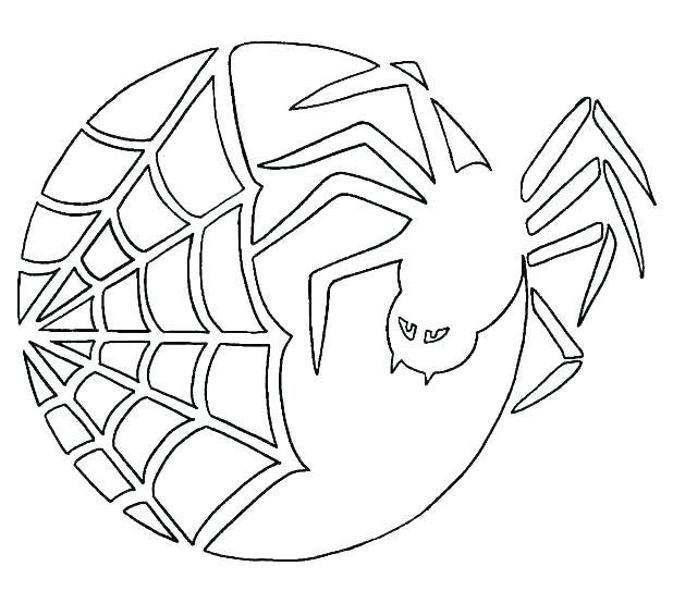 spider web printable spider web printable printable spider ...