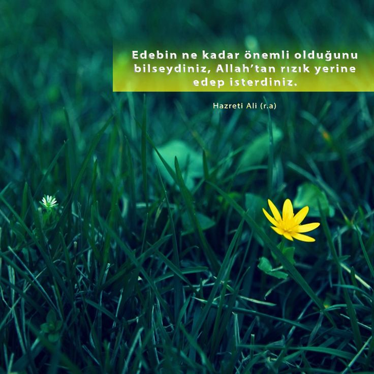 Edebin ne kadar önemli olduğunu bilseydiniz, Allah'tan rızık yerine edep isterdiniz.  Hazreti Ali (r.a)