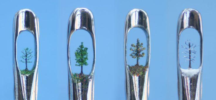 Seasons - Trees