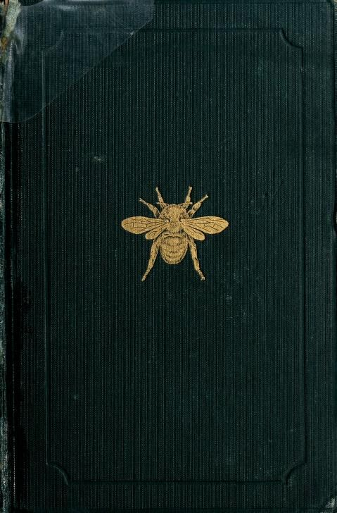 Decorative cover of 'Entomology For Beginners' (1889). Author A. S. Packard. Published by Henry Holt and Company.