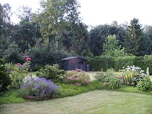 This is the first thing that you need to think of when it comes to your garden: the amount of space available in order to create a perfect environment where you want to go in the morning for a coffee or in the afternoon to read a book.  http://www.whoduz.com/5-tips-improve-garden-celebrity