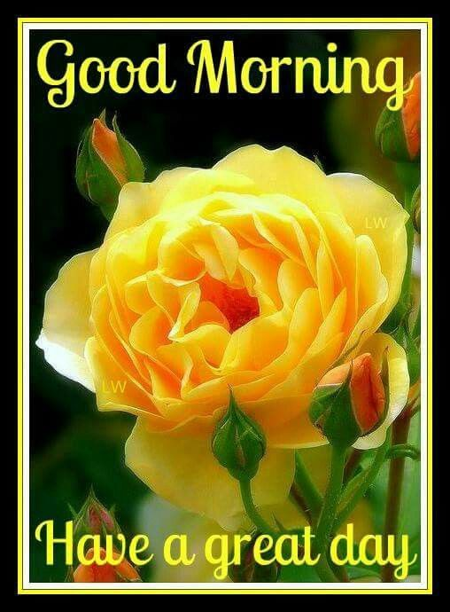 Good Morning Sunshine Have A Beautiful Day : Images about good morning sunshine on pinterest