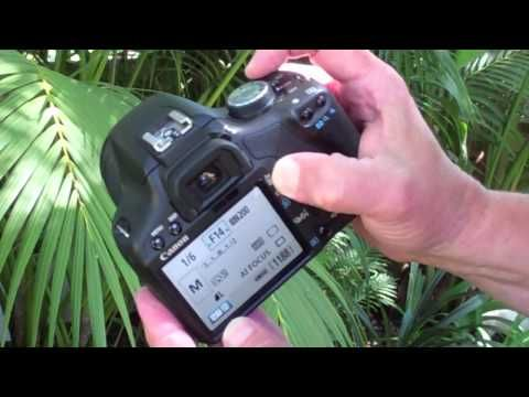 How to Set Manual Exposure on a Canon Digital Rebel Camera