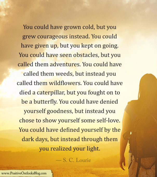 S.C. Lourie - You Could Have Grown Cold...