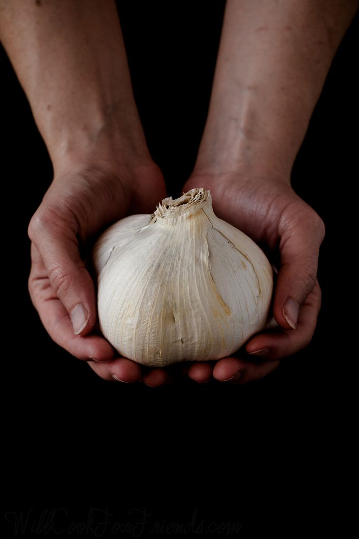 https://flic.kr/p/fLeFX3 | Elephant Garlic - what it is and how to use it | www.willcookforfriends.com/2013/09/elephant-garlic-what-i...