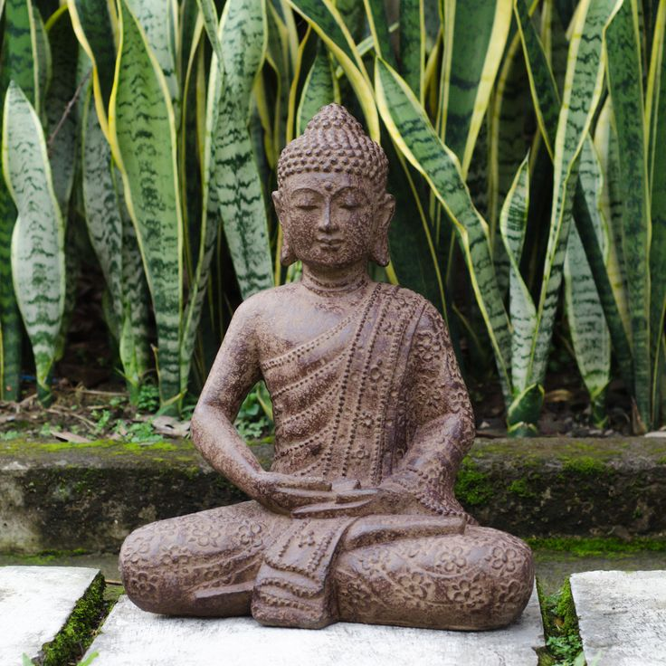 top 25 best buddha garden ideas on pinterest meditation garden zen gardens and asian terrariums. Black Bedroom Furniture Sets. Home Design Ideas