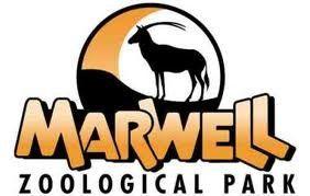 Marwell Zoo - Family Ticket