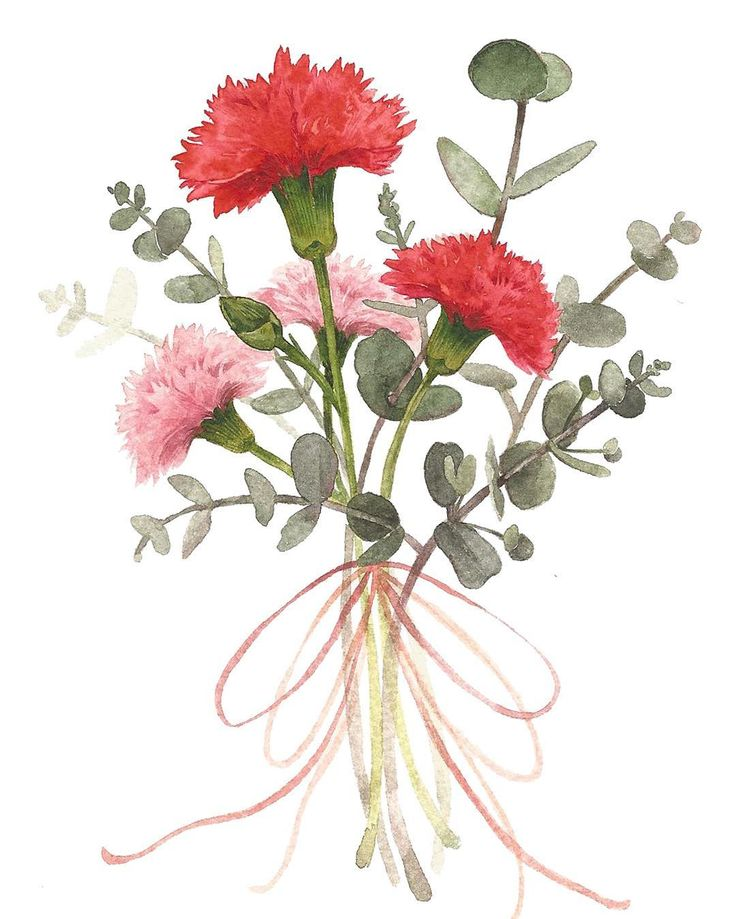 Title : 카네이션 / Flower Art . Artist : @mmmin_kkkyung 김민경 팔로우 좋아요/ 문의 > DM주세요 / 무단 카피 금지, 신고 blog.naver.com/sarah600 #axb #art #artist #artwork #draw #drawing #illust #illustration #flower #mood #watercolor #illustrator #portrait #daily #trend #fashion #flowerpainting #패션 #꽃 #손그림 #일러스트 #전시 #그림 #미술 #데일리 #イラスト #アート #写真 #イラストレーション