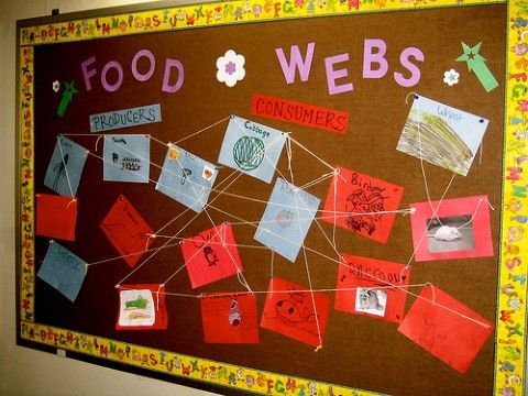 Tons of bulletin board ideas for all kinds of holidays, subjects, and ages!