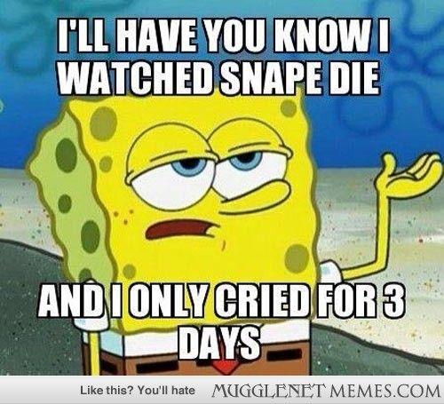 MuggleNet Memes Harry Potter Memes and Funny Pics lol