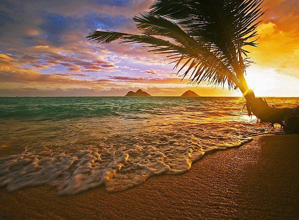 """Like"" if you have ever gone to the beach early enough to see the sun rise while on vacation! (Pictured: Lanikai, Hawaii) #Travel #GoTravel"