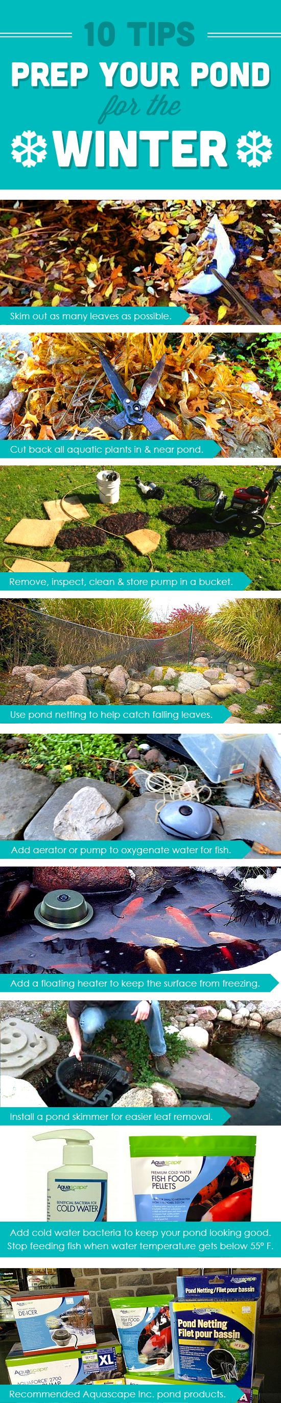 10 Tips on how to winterize your pond. Click through for more details and instructions on each step.