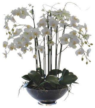 Phalaenopsis In Glass Flower Arrangement - traditional - Artificial Flowers - Winward Designs