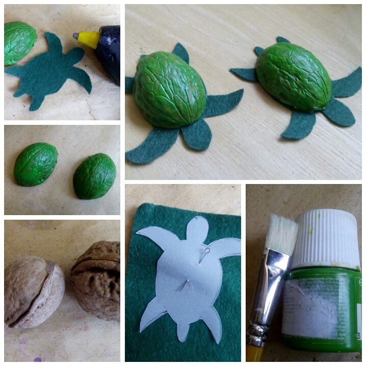 Making of Sea Turtles from Walnut shells