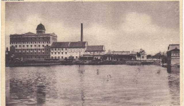 """Malom és a """"ló úsztató tó"""" 1920-30-as évek"""