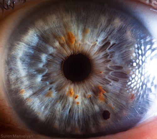 """EXTRA: """"Your Beautiful Eyes"""" by Armenian photographer Suren Manvelyan is a macro photography series of human eyes. The photos are such extreme close-ups that the eyes take on an almost otherworldly quality."""