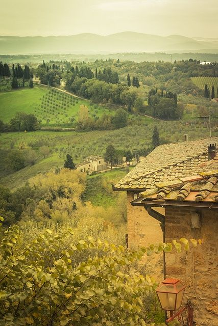 Italian wine country---Tuscany