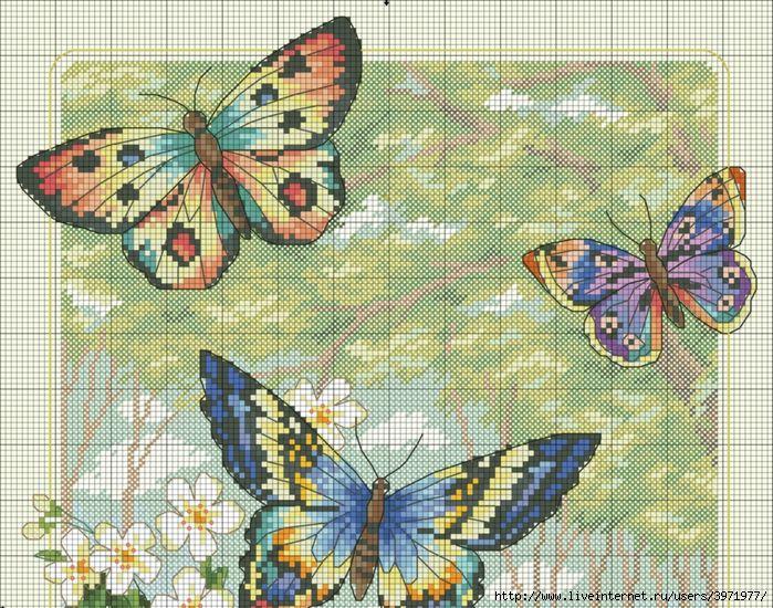 Превью Копия Butterflies -7101 (700x550, 476Kb)