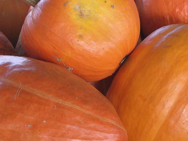 Farmers' Market Raleigh NC by islandmommacanarias, via Flickr