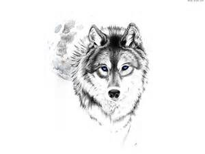 Beautiful Wolf Coloring Pages for Adults - Bing images