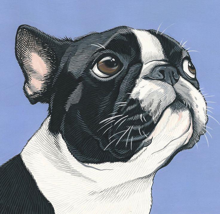 Custom pet portraits –Art By Manda
