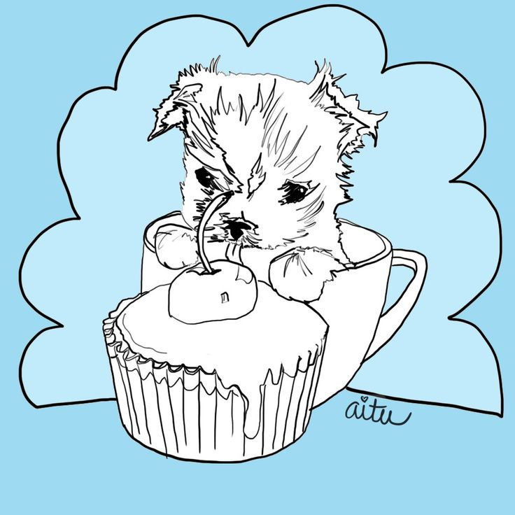 230 Best Images About Dessin Yorkie On Pinterest