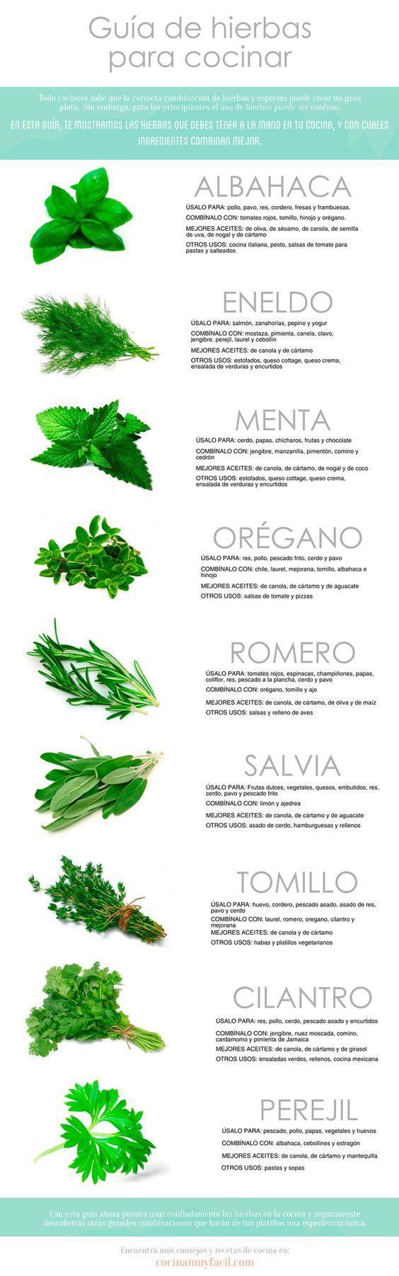Utilizando hierbas aromáticas en tu comida, puedes hacerla más sabrosa sin necesidad de utilizar ingredientes altos en grasa, en azúcar o en sodio. Guía de hierbas para cocinar. Infografía http://cocinamuyfacil.com/guia-de-hierbas-para-cocinar-infografia/
