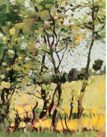 The River Meadow at Poduri - Stefan Luchian