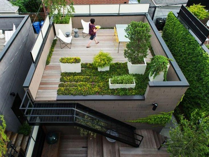 petit jardin sur le toit -terrasse aménagé avec des graminées d'ornement en jardinières et du gazon