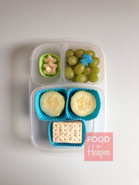 Healthy toddle lunch box ideas | | packed in @EasyLunchboxes containers