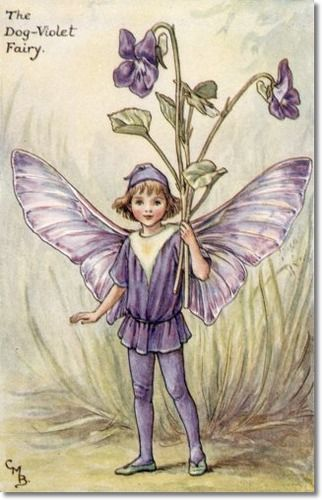 Cicely Mary Barker - Flower Fairies of the Spring - The Dog-Violet Fairy Archival Fine Art Paper Print