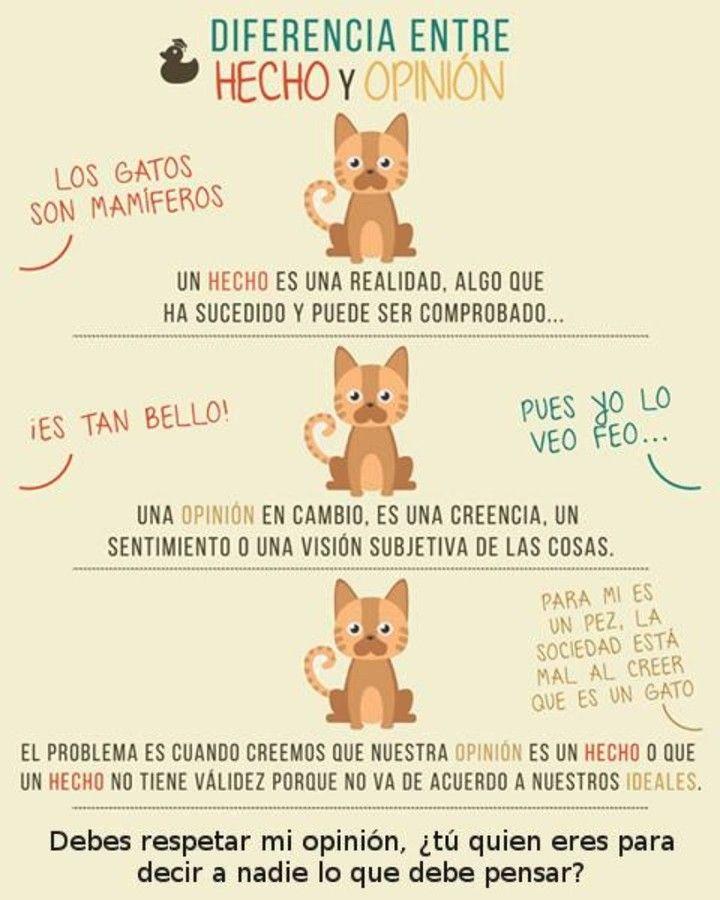 Hecho y opinion #Viñeta #Humor