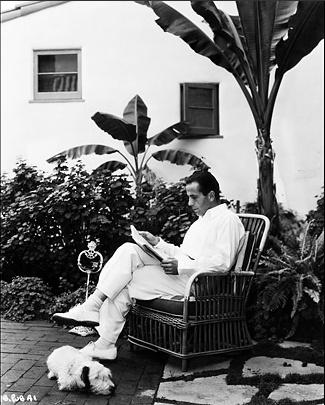Humphrey Bogart with a Sealyham Terrier
