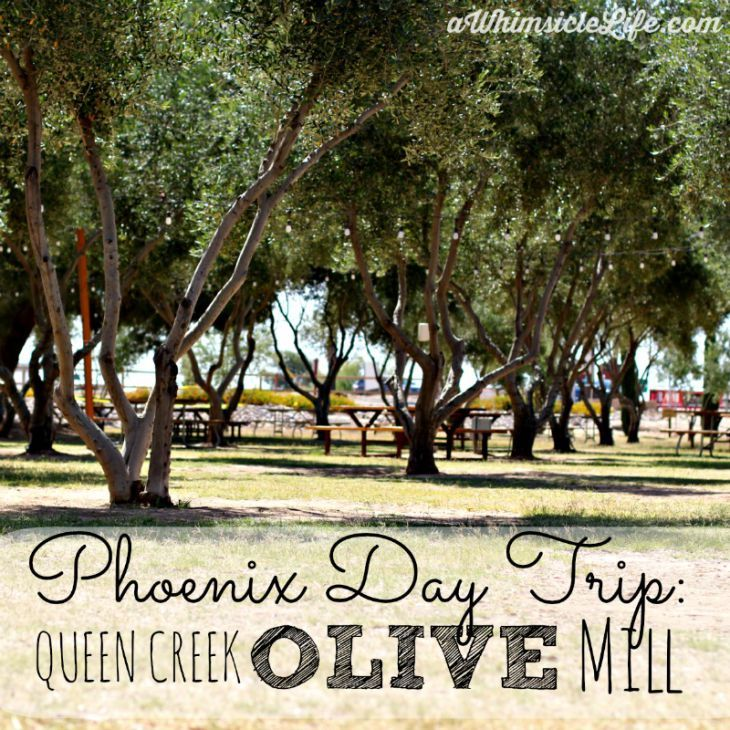 A great place to go as a local and to take out of town guests.  Queen Creek Olive Mill produces high quality olive oils, tasty bruschetta and even its own skin care line.  This post tells you what to look for in olive oil and also includes tons of delicious pictures of what you can expect when you visit.