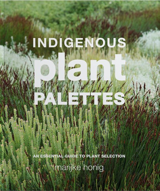 66 Square Feet (Plus): Indigenous Plant Palettes - a South African book g...