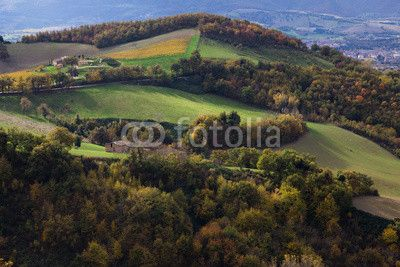 Paesaggio rurale marchigiano. #Rural #Landscape #Marche #Italy #Nature #Autumn #Season #Nature #Travel #Tourism