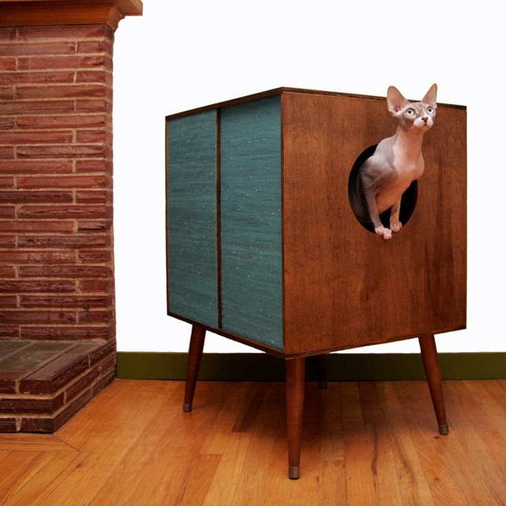 Do you think they could have picked a more attractive kitty to model this modern  cat litter box cover piece   D Either way  this is such a clever idea. 66 best images about Clever Litter Boxes on Pinterest   Cats