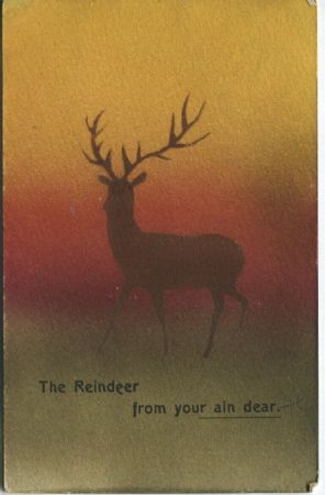 Oynicus Postcard - The Reindeer from your ain dear