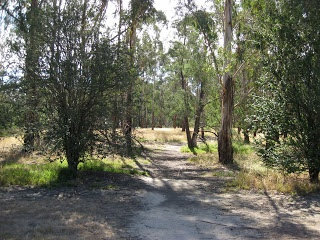 Melbourne Park Walk: Sweeneys Flats to Griffith Park   Eltham   Victoria