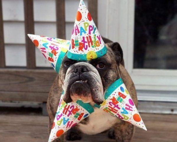 Happy birthday, idbowman Ece60e5b62b421db0cc39b74a379f880
