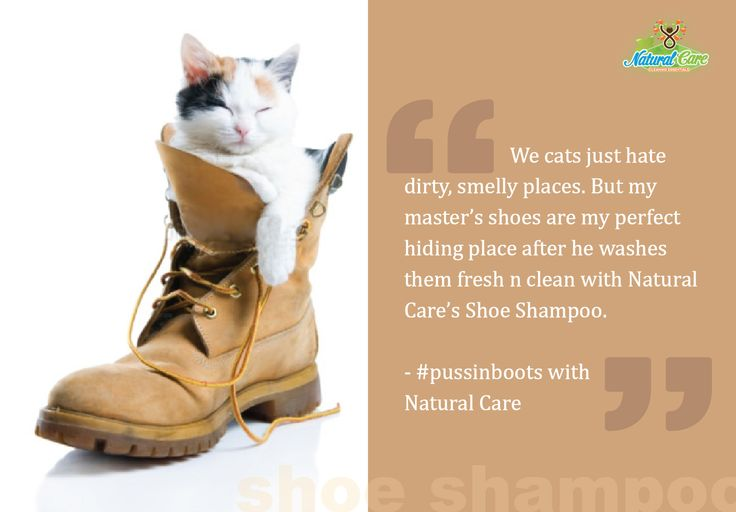 #pussinboots #naturalcare #shoe #shampoo