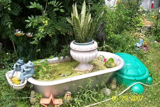 17 Best images about Frog pond ideas on Pinterest ...