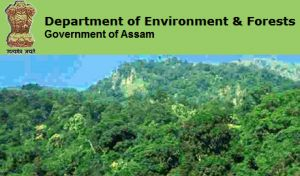 Assam forest Recruitment 2017, Download Assam forest Department Recruitment 2016-17 advertisement, fill Assam Forest application form, check eligibility.
